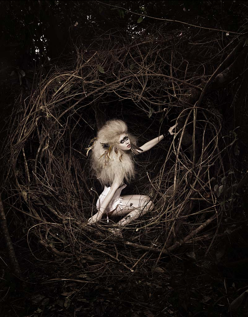 allison harvard antm photos